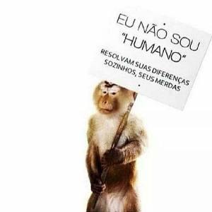 Macaco com cartaz eu não sou humano